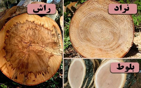 مقایسه چوب گردو ، چوب نراد و چوب بلوط