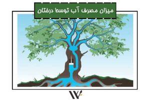 میزان مصرف آب توسط درختان